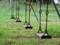 八重瀬公園の遊び場