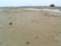 玉城の海岸にて
