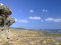 山城の海岸