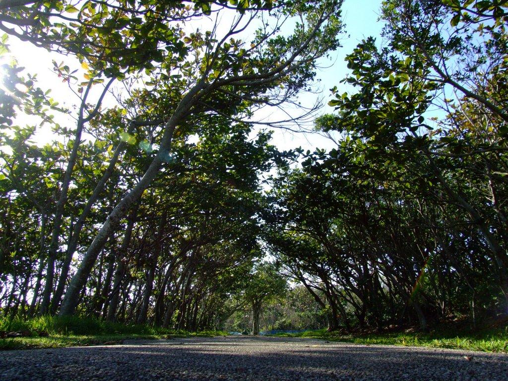 平和創造の森公園にて