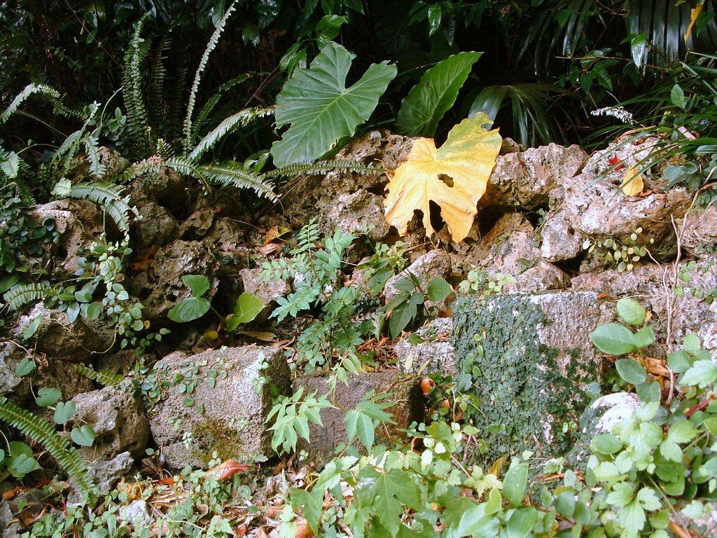 根石グスクの拝所 根石グスクの拝所 20140302  個別「根石グスクの拝所」の写真、画像、動