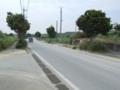 県道250号線