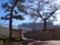 上ノ森公園