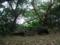 松尾御嶽とその近くの拝所
