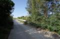うされー橋から前川への道