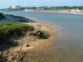 恩納漁港にて