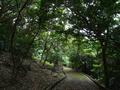八重瀬公園北の遊歩道@八重瀬町字世名城