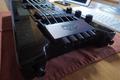 Steinberger Bass XT-25