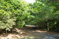 2020.11.07 平和創造の森公園@糸満市字山城