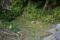 2021-01-02 161855 南城市知念字山里:大馬の横の井戸