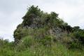 2021-03-14 123929 中城村字新垣:ペリーの旗立岩