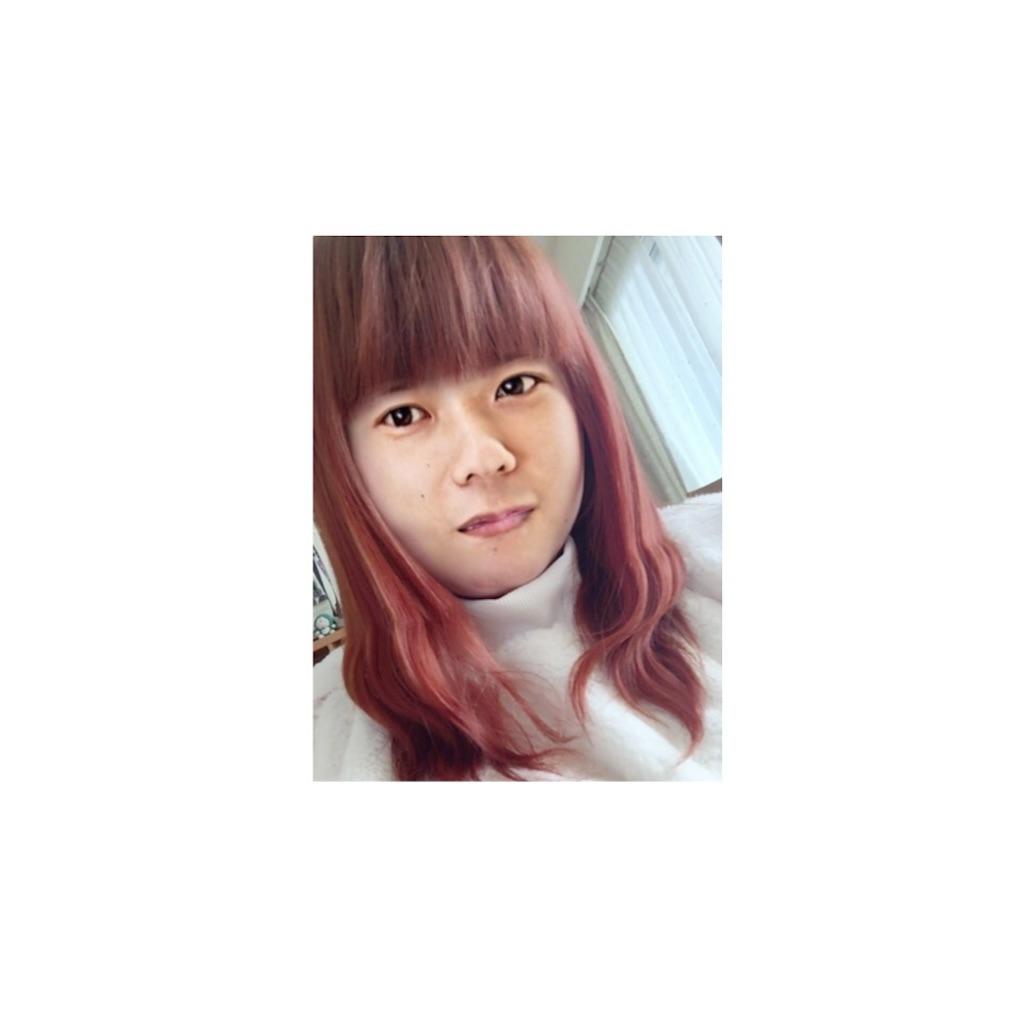 f:id:SS_Miiko:20161219180354j:image