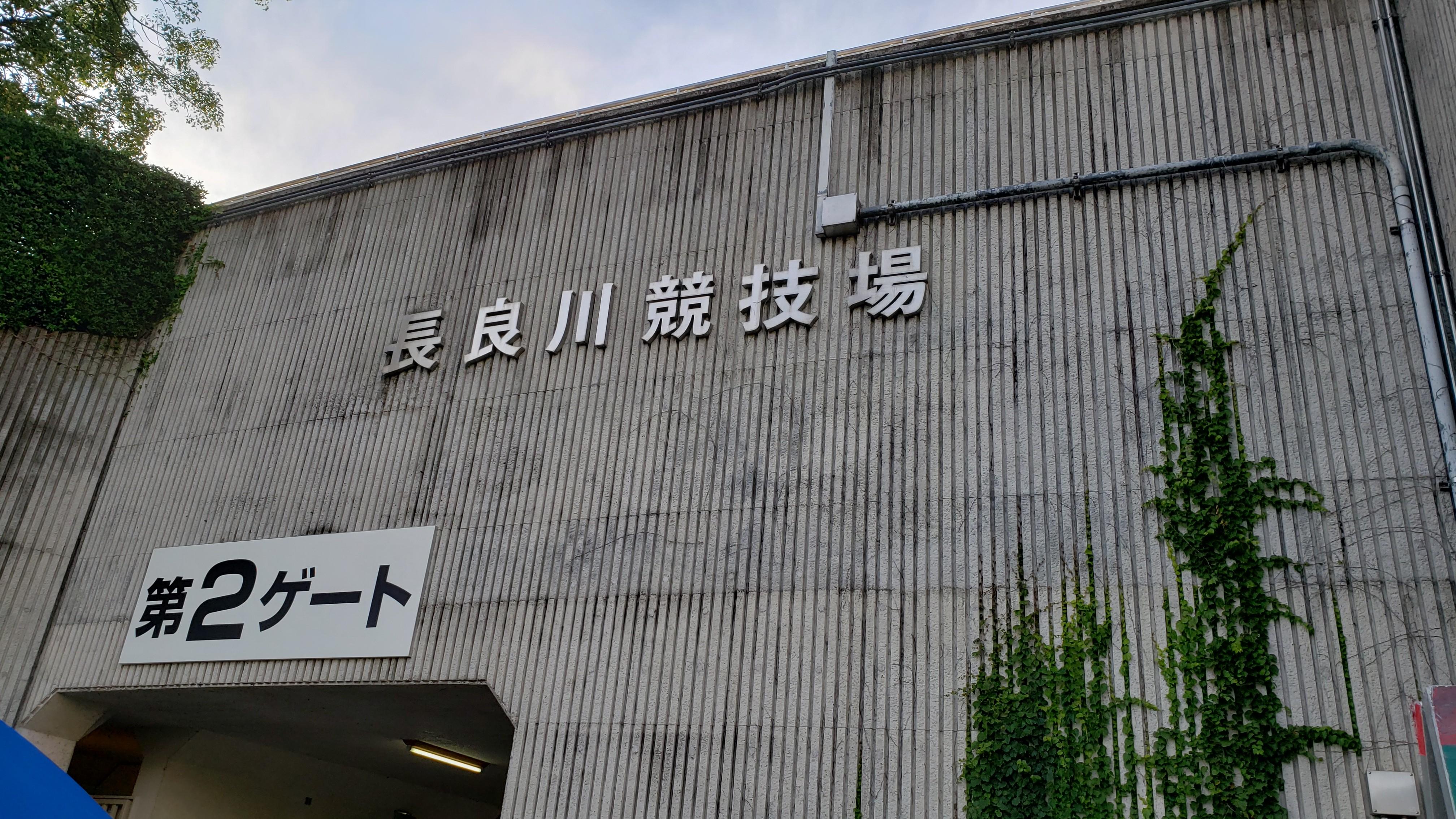 f:id:SURUmeee_JP:20191008230751j:image