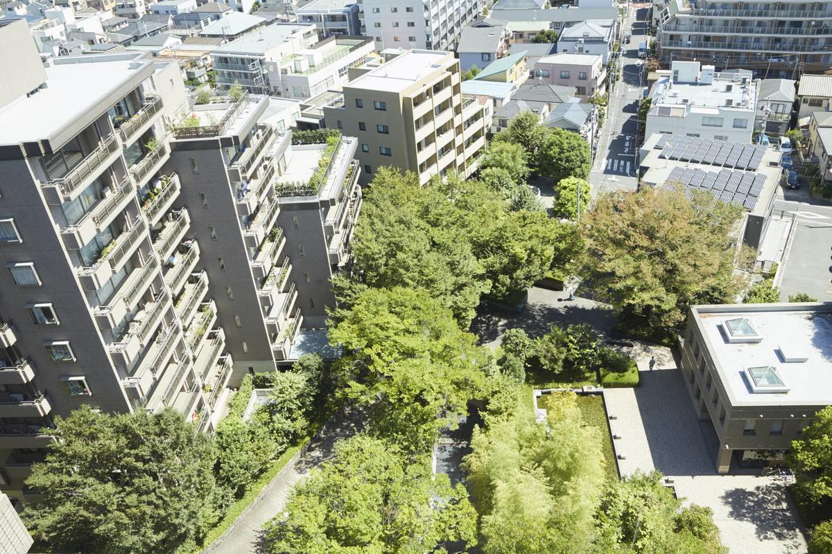 パークハウス多摩川を俯瞰。緑豊かなことがわかる