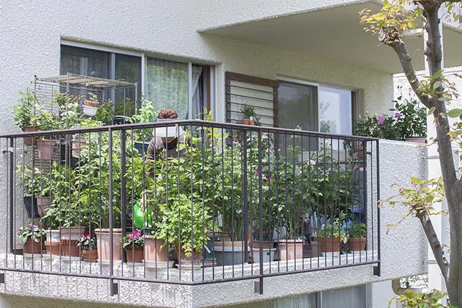 広いバルコニーで植物を育てる住人