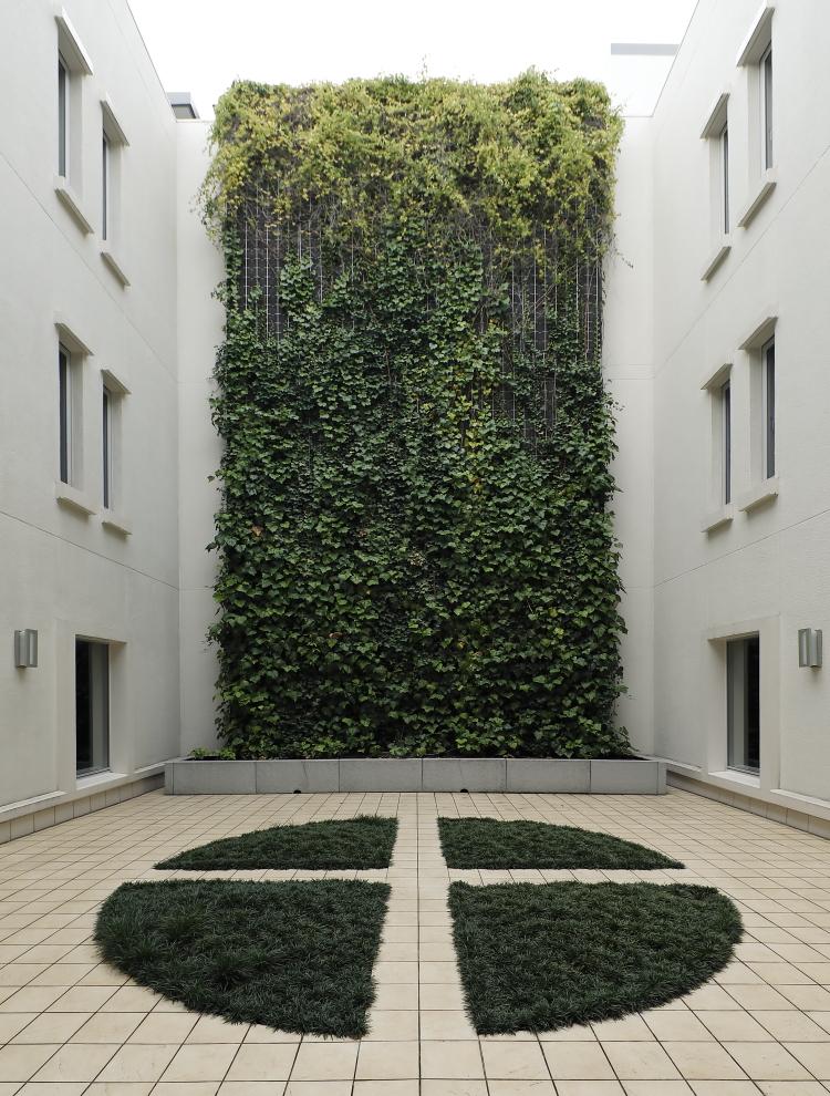 ルクセンブルグハウスの「エアキューブ」は屋根がなく開放的