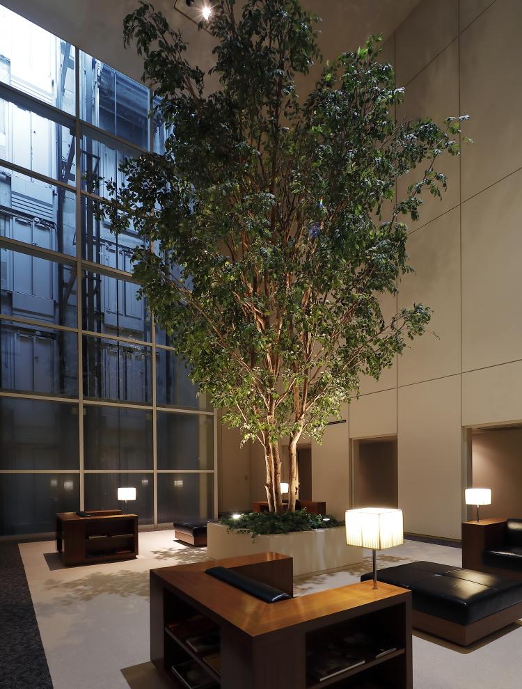 ルクセンブルグハウスの「ホワイトキューブ」には室内に大きな木がある