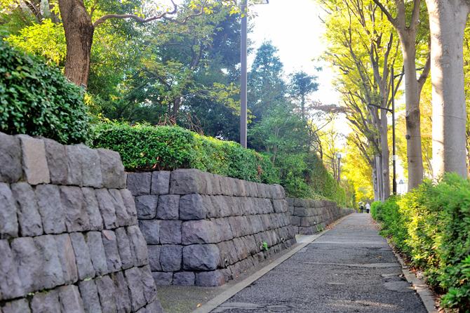 広尾ガーデンヒルズの緑豊かな歩道