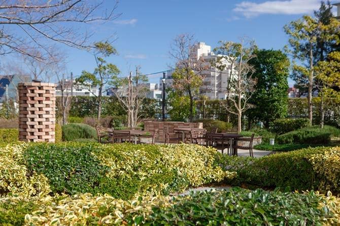 ザ・センター東京の共有ガーデン