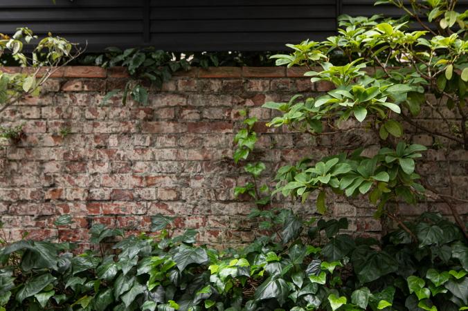 パークハウス楠郷臺建設前から残る煉瓦塀