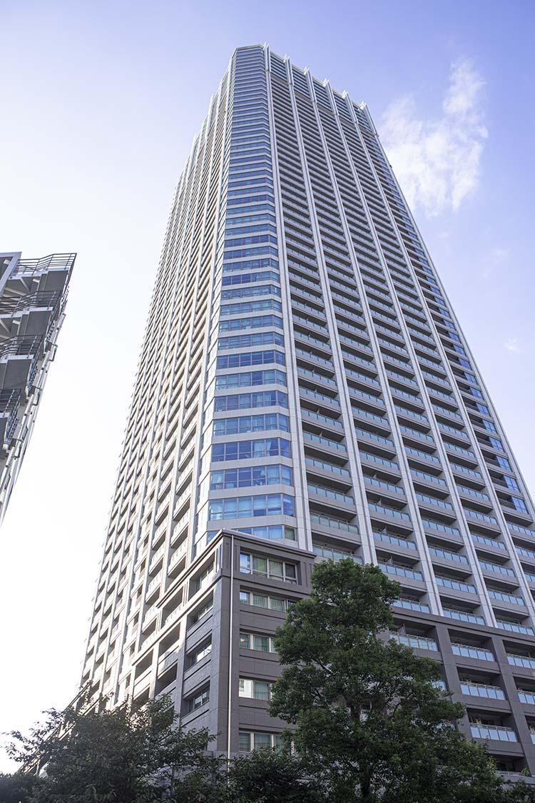 建て タワー 階 マンション 55