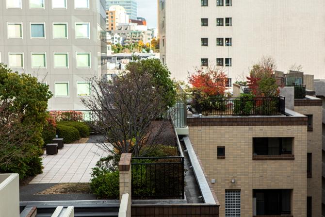 アトラス江戸川アパートメントの屋上庭園の写真