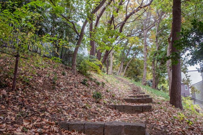ヒルサイド久末の森の中の散策路