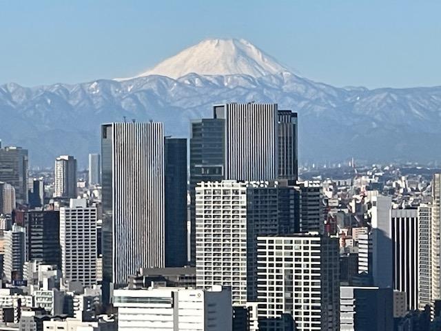 クロノレジデンスの住戸から見える富士山の写真