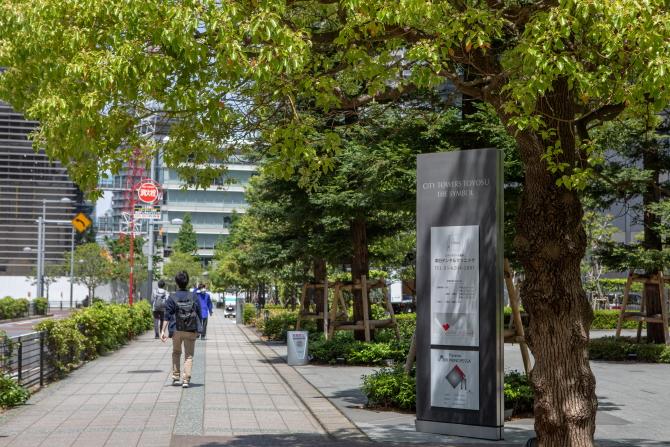 シティタワーズ豊洲 ザ・シンボルの前の歩道