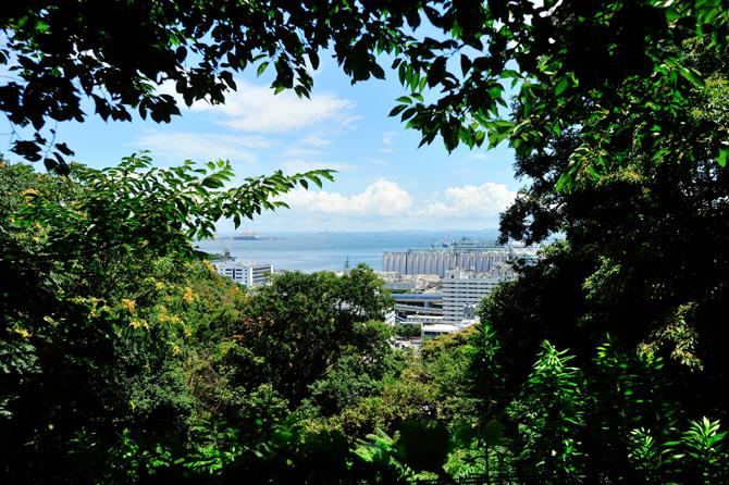 ブリリアシティ横浜磯子の遊歩道からの眺望