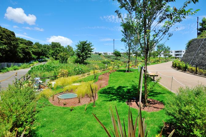 ブリリアシティ横浜磯子内の整備された緑地