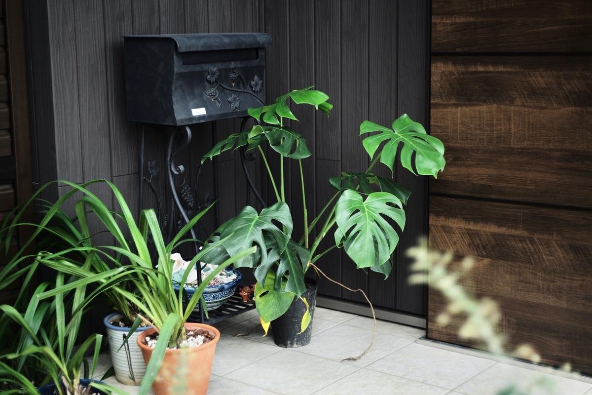 玄関のポストと鉢植えがおしゃれ/注文住宅実例