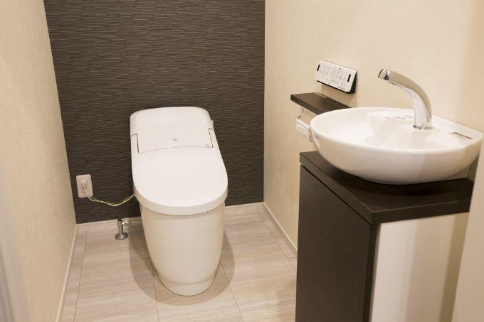 来客も気軽に使えるように玄関脇に手洗いカウンター付きトイレを設けた/注文住宅実例