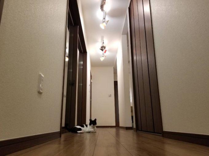 十分な幅を持たせた廊下/注文住宅実例