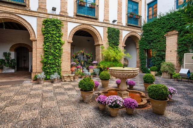 噴水や植栽が美しいパティオ