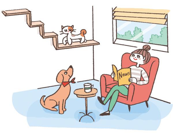 キャットウォークにいる猫を見上げる犬