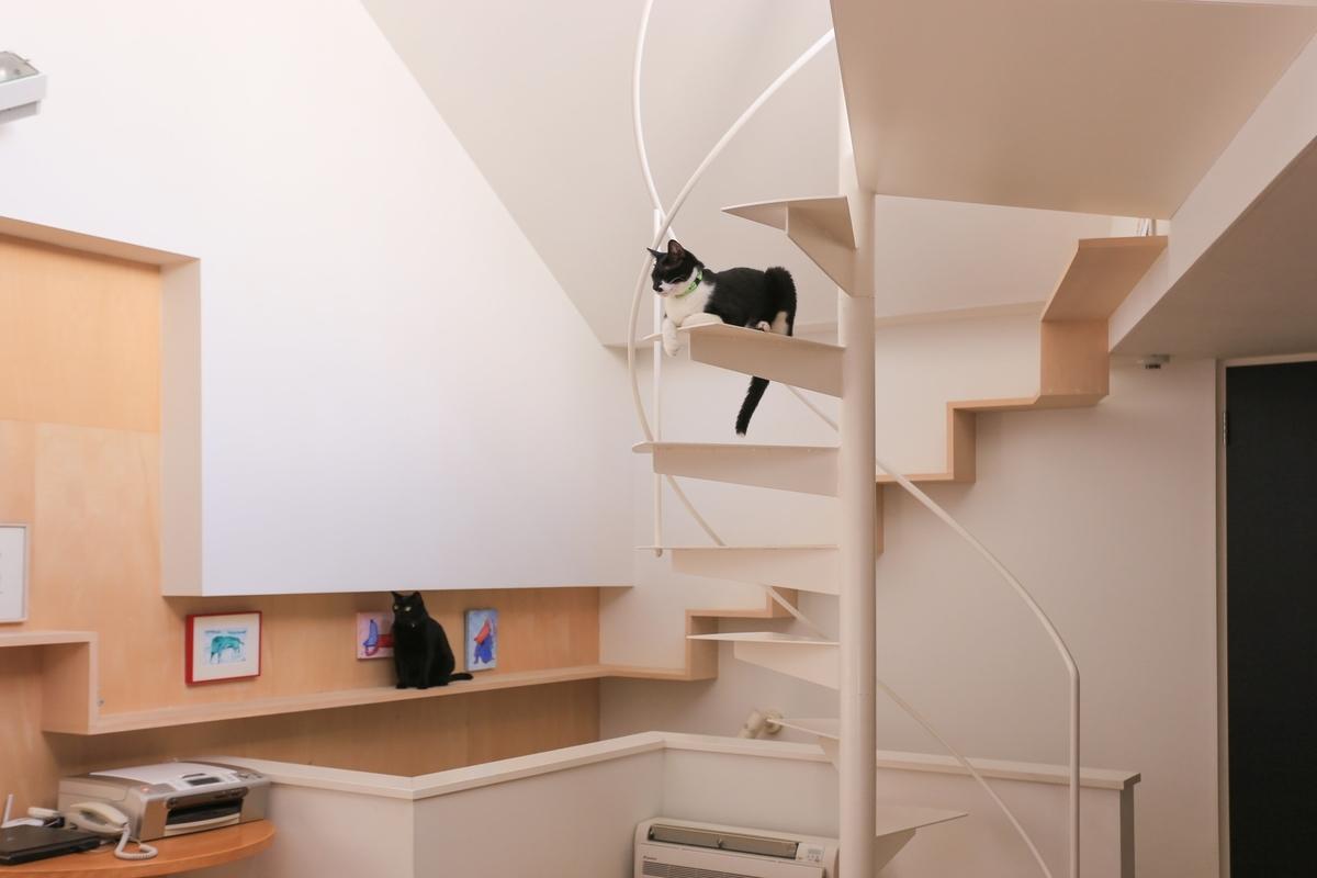 キャットウォークを設置した注文住宅実例