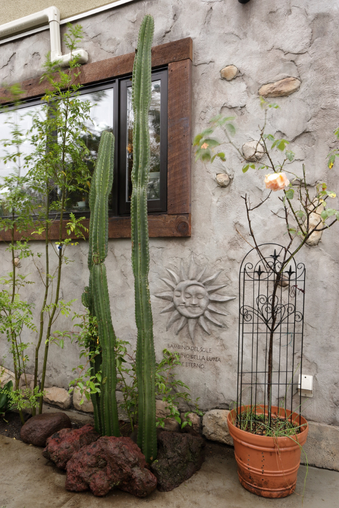 モルタルで造形した外壁