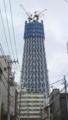 [風景]スカイツリー建設中(215m時点)