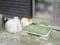 白馬八方温泉みみずくの湯横の豆腐屋(豆亭)のわんこ