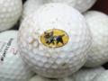 [ゴルフ]クロネコのゴルフボール