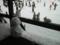 パノラマのレストハウス前に雪だるま