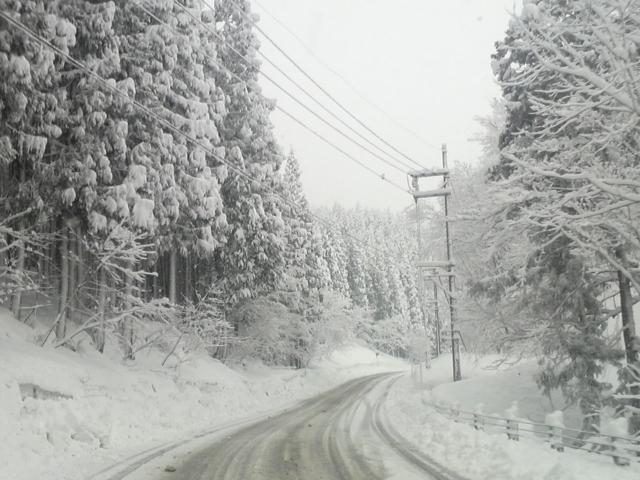 ハチ北ゲレンデPへの道