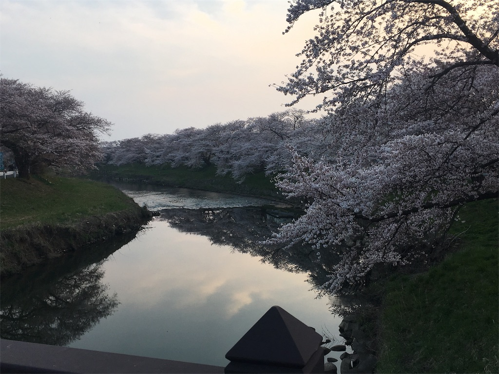 f:id:Saiko_R_F:20180420233025j:image