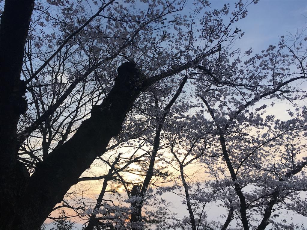 f:id:Saiko_R_F:20180422175343j:image