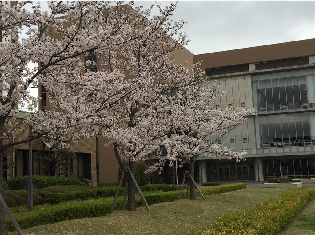 f:id:Saitama-2000:20170414233640j:image