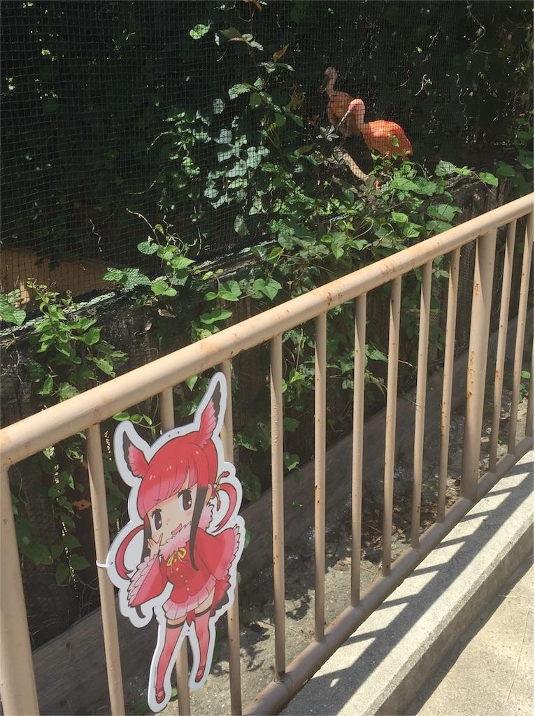 f:id:Saitama-2000:20171118184924j:image