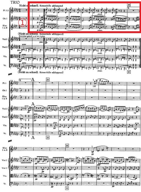 Bruckner Symphony No.4 Mvt.3 Trio Haas 1944-1