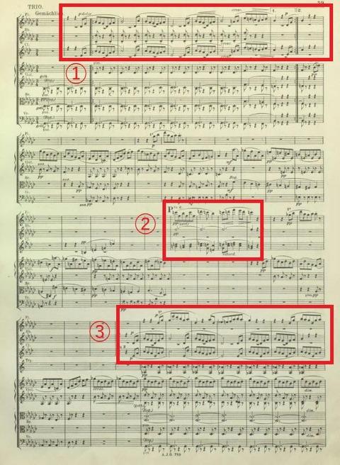 Bruckner Symphony No.4 Mvt.3 Trio 1888 version-1