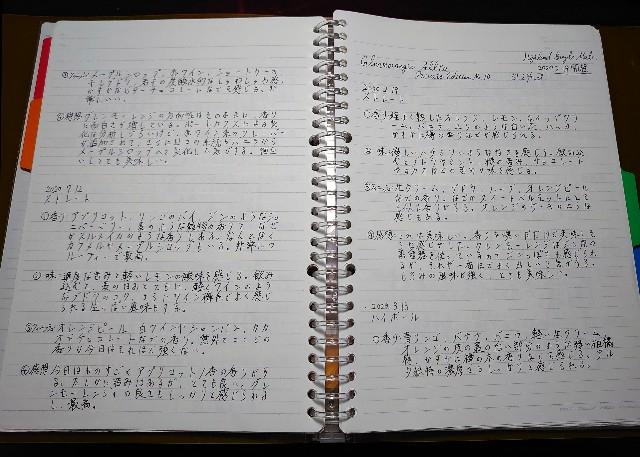 f:id:Saito_numa:20200811220113j:plain